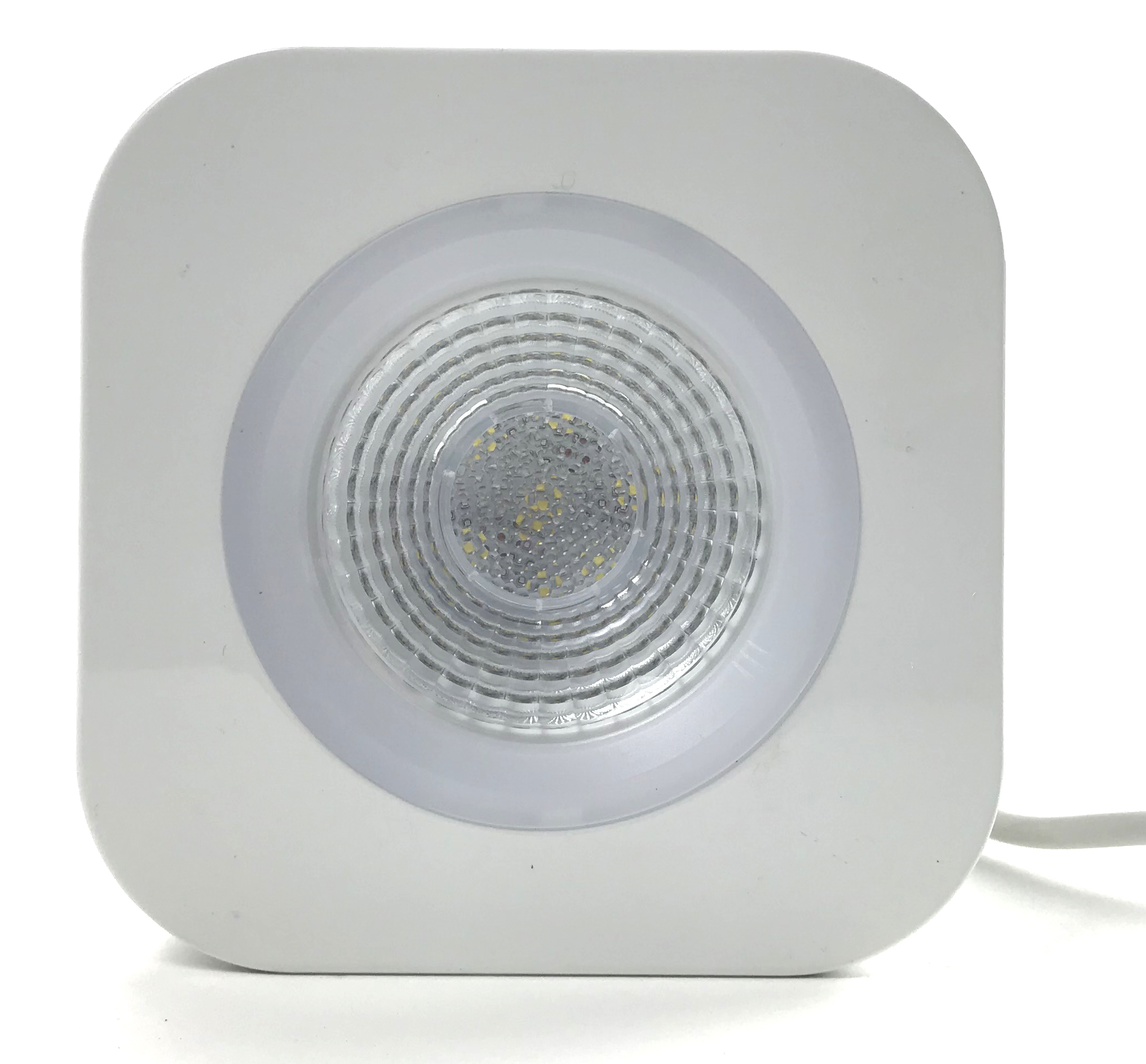 Coral Booster LED Pendant with Mount